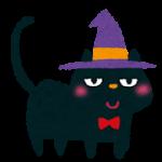 haloween_cat